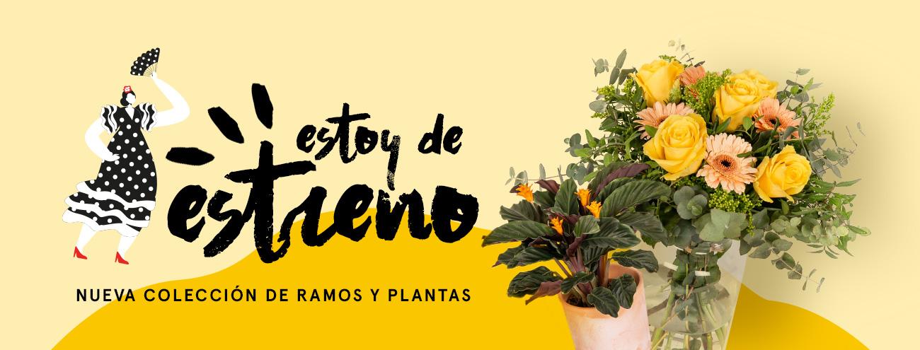 Nueva colección de ramos y plantas Mariflores
