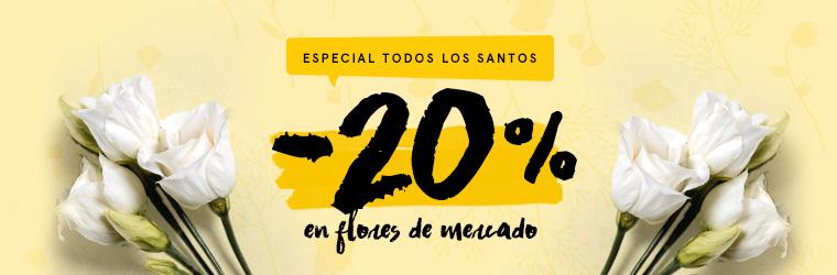 Oferta especial día de Todos los Santos: 20% de descuento en flores de mercado