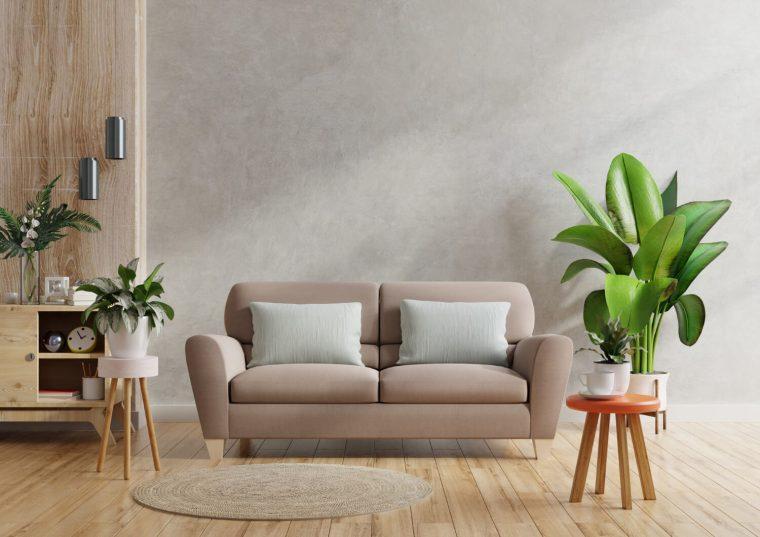consejos de decoración con plantas de interior