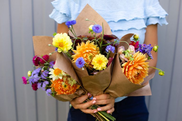 Woman in blue blouse holding beautiful bouquets of flowers. Hands with bouquets of seasonal flowers in craft paper. Bouquets as a gift on 1st september. Orange dahlia flowers